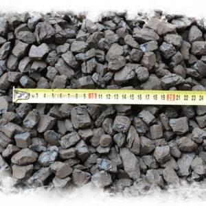 Uhlí ořech 1 deatil s pravítkem