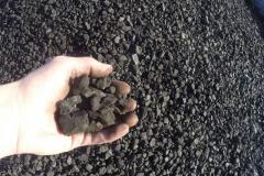 uhlí ořech 2